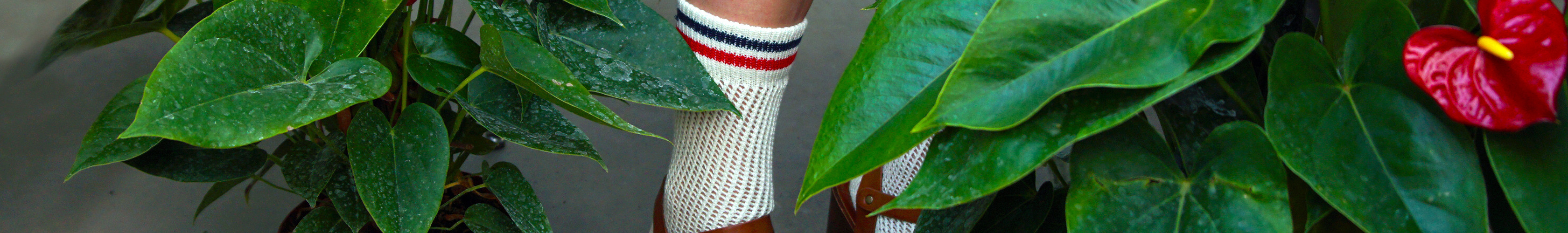 Perforated Socks